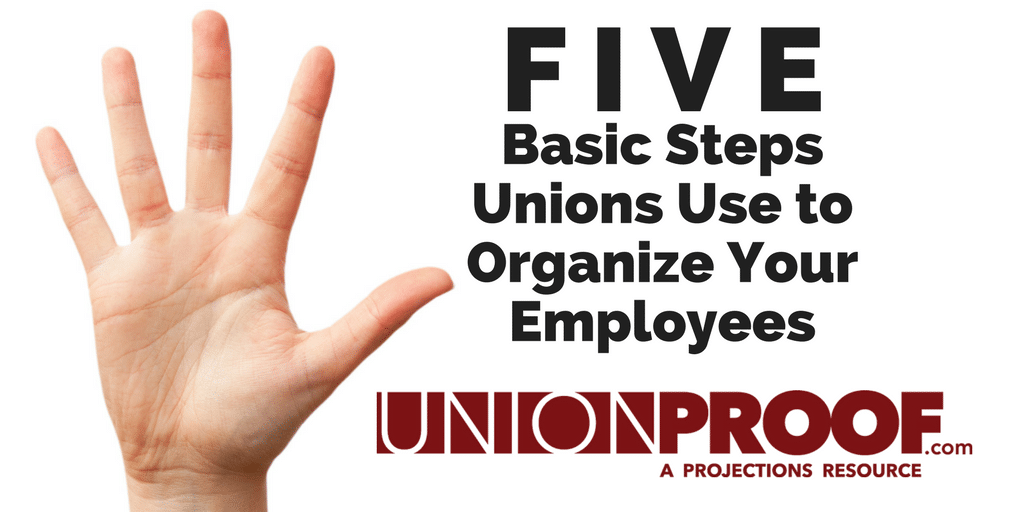 steps unions use to organize