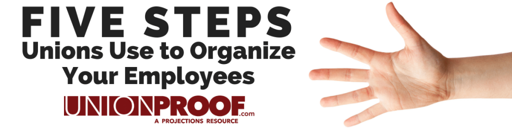steps unions use to organize employees