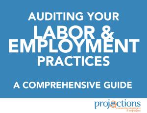 Labor & Employment Audit