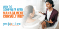 why do companies need management consulting